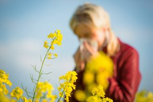 Woman sneezing into tissue in background of yellow flowers/plants.